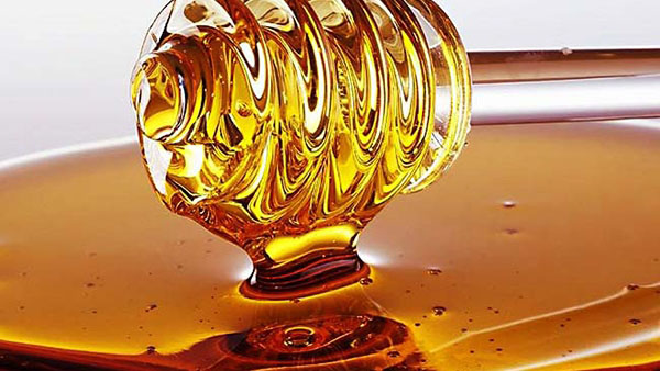 Μέλι το θαυματουργό: δείτε ποια είναι τα 8 είδη σπάνιου μελιού στην Ελλάδα